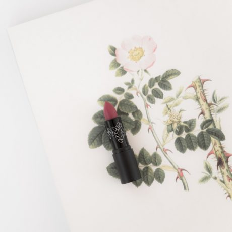 Le Bois de Rose Lipstick No11#ACKiss11Photo2FCAudreyBozzetto.jpg